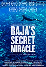 Baja's Secret Miracle