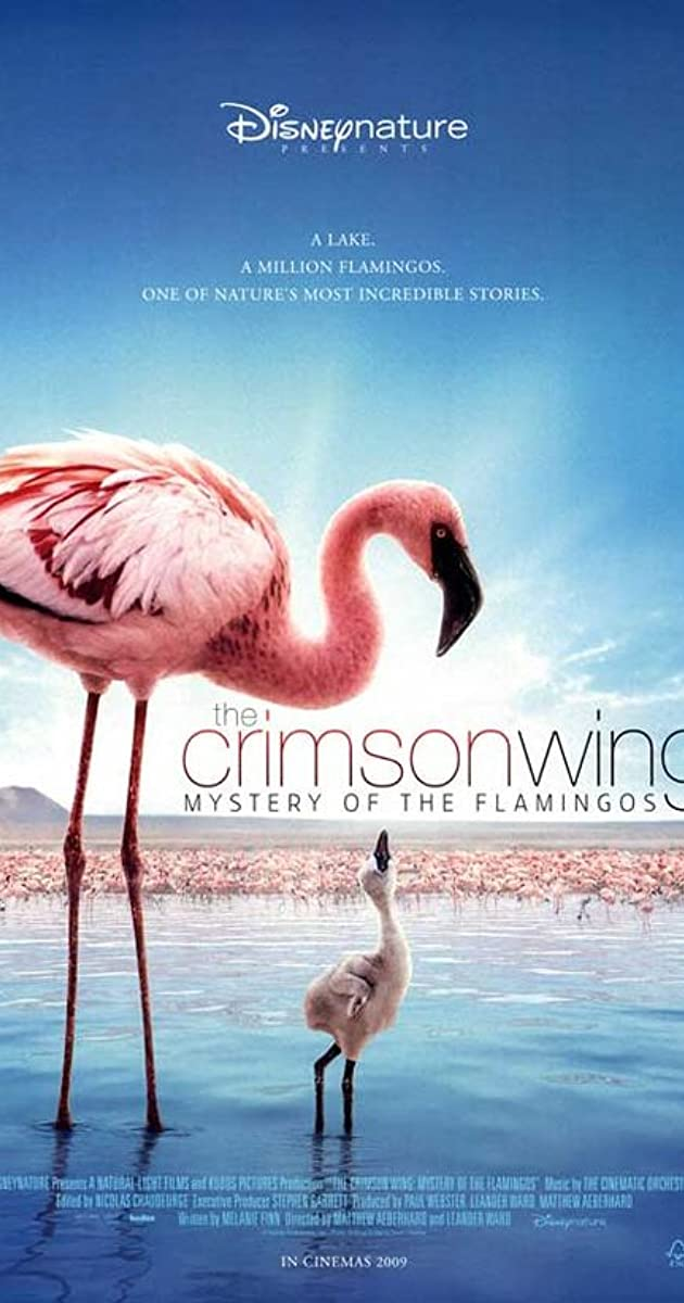The Crimson Wing Mystery Of The Flamingos 2008