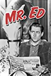 Alan Young, 'Mister Ed' Star, Dies at 96