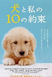 10 Promises to My Dog(2008) Poster - Movie Forum, Cast, Reviews
