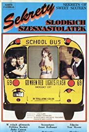 Secrets of Sweet Sixteen Poster
