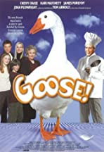 Goose on the Loose