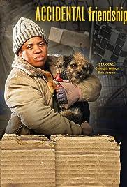 Accidental Friendship(2008) Poster - Movie Forum, Cast, Reviews