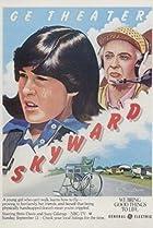 Skyward (1980) Poster