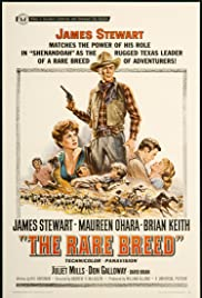 The Rare Breed Poster