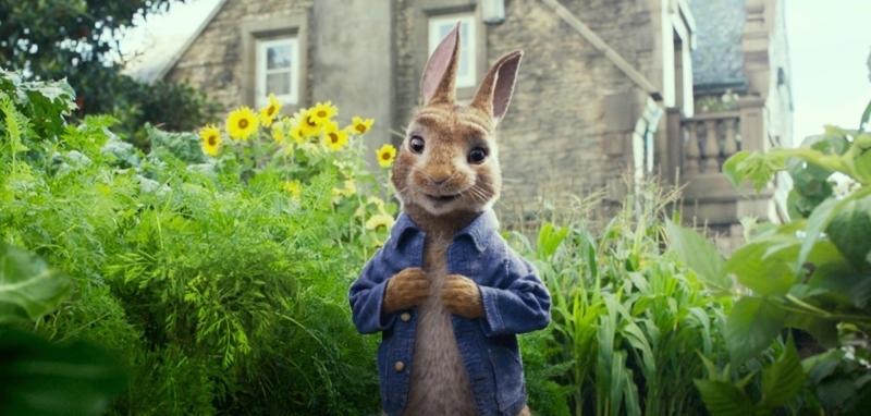 Peter Rabbit https//wwwimdbcom/title/tt5117670/characters/nm0179479ref_tt_cl_t1 in Peter Rabbit 2018 https//wwwimdbcom/title/tt5117670/ref_nv_sr_1