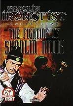 Shaolin Vengeance
