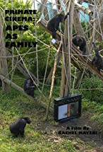 Primary image for Primate Cinema: Apes as Family