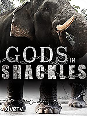 Where to stream Gods in Shackles