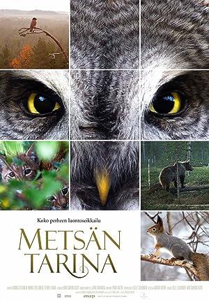 Metsän tarina (2012)