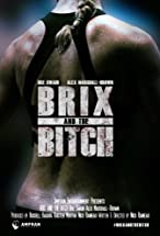 Primary image for Brix and the Bitch