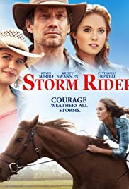 Storm Rider (2013) Poster - Movie Forum, Cast, Reviews