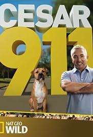 Cesar 911 Poster - TV Show Forum, Cast, Reviews