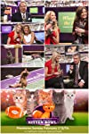 Puppy Bowl vs. Kitten Bowl vs. Fish Bowl: Which was cutest?
