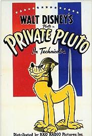 Private Pluto Poster