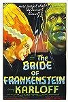 Bride of Frankenstein Revs Back Up to Save Dark Universe?
