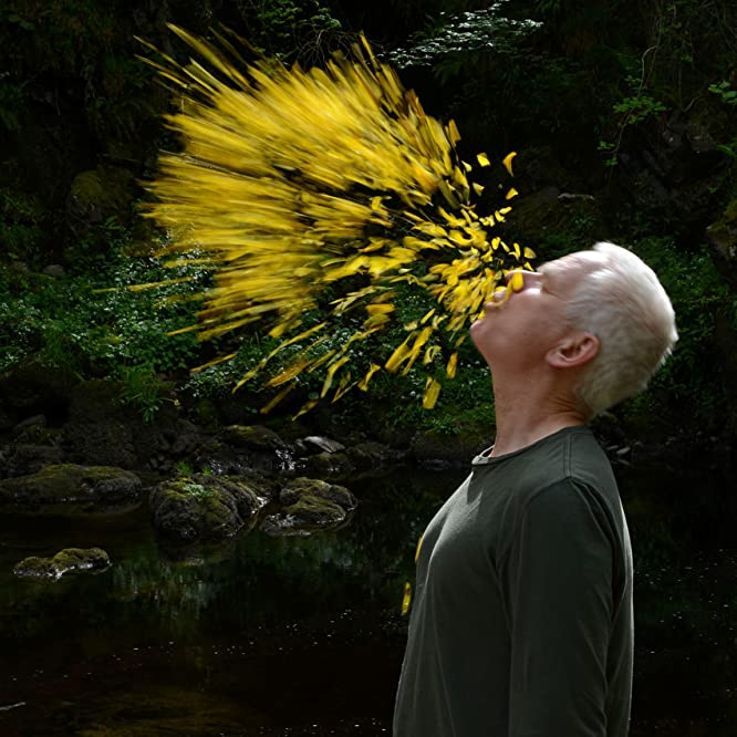 Andy Goldsworthy in Leaning Into the Wind: Andy Goldsworthy (2017)
