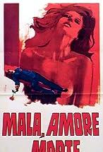 Primary image for Mala, amore e morte