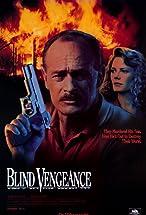 Primary image for Blind Vengeance