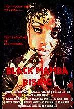 Primary image for Black Mamba