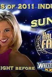 WWE Hall of Fame 2011 Poster