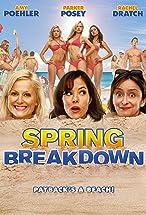 Primary image for Spring Breakdown
