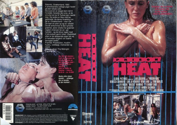 Image result for Prison Heat 1993