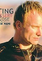 Primary image for Sting: Desert Rose