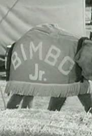Bimbo Jr. Poster