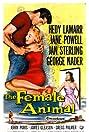 The Female Animal