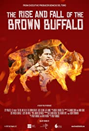 The Rise and Fall of the Brown Buffalo Poster