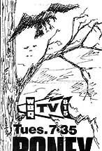 Primary image for Boney
