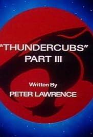 Thundercubs: Part III Poster
