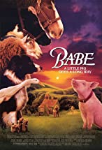 Primary image for Babe