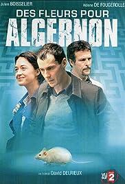 Des fleurs pour Algernon(2006) Poster - Movie Forum, Cast, Reviews