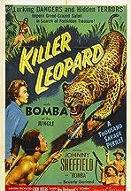 Killer Leopard