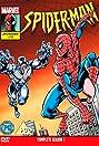 Spider-Man (1994) Poster