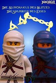Ninjas vs. Skeletons Poster