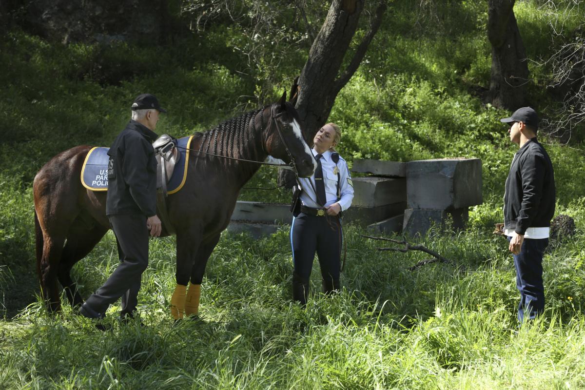 NCIS: Enquêtes spéciales: Beastmaster | Season 14 | Episode 22