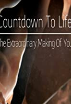 Countdown to Life: The Extraordinary Making of You