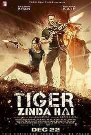 Tiger Zinda Hai (2017) HD Full Movie (723.MB)