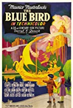Primary image for The Blue Bird