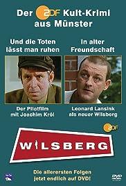Wilsberg Poster
