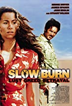 Primary image for Slow Burn