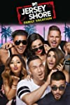 MTV Greenlights Four New Series to Build on 'Jersey Shore Family Vacation' Success (Exclusive)