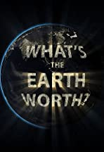 What's the Earth Worth?