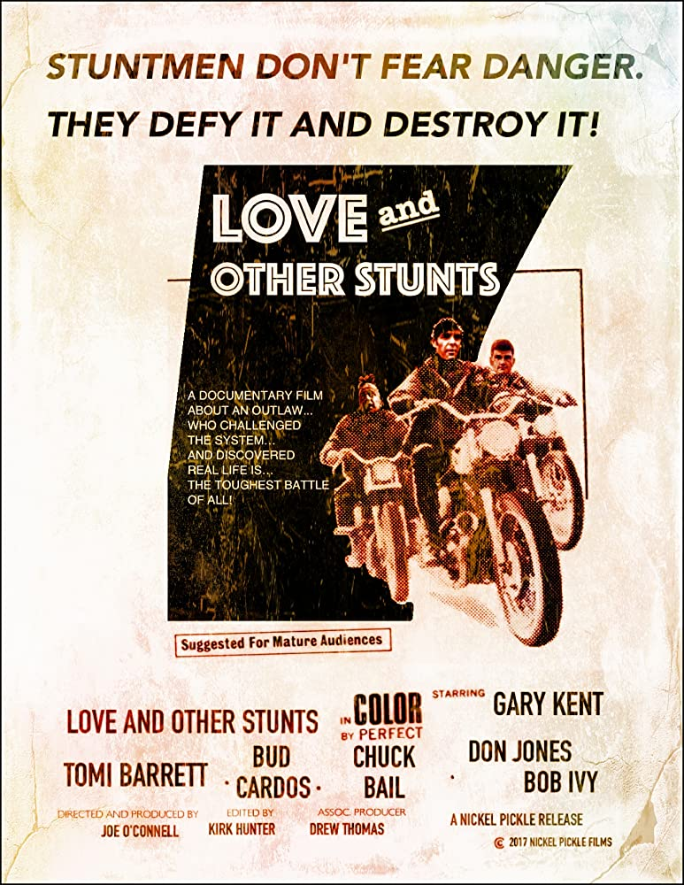 Image result for love and other stunts