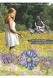 Wildflowers (2017)