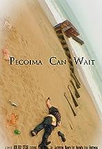 Pecoima Can Wait