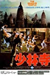 Shaolin temple goes global